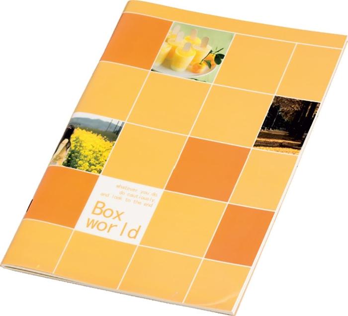 Slika od BOX WORLD bilježnica B5 crte 1-10