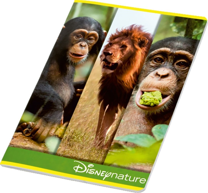 Picture of DISNEY NATURE A4 notebook grid paper 1-10 – 100 g paper