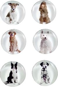 Picture of MAGNETS dogs 1-1 – magnet diameter 40 mm