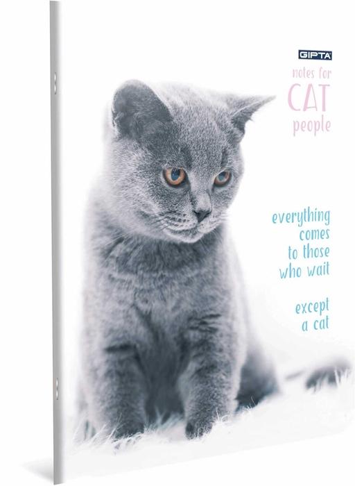 Slika od Bilježnica A4 Cat crte
